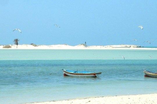djerba paysage plage